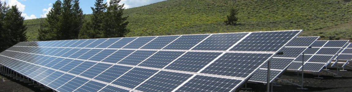 solar panels on a hill with fir trees in Pennsylvania