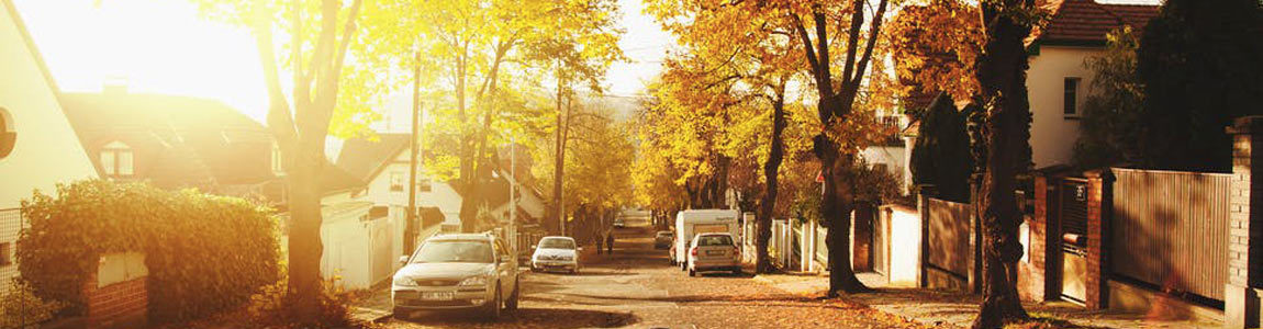 a residential street with the sun rising in the background, through the trees